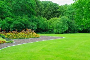 Worry-Free Landscaping for Your Commercial Property